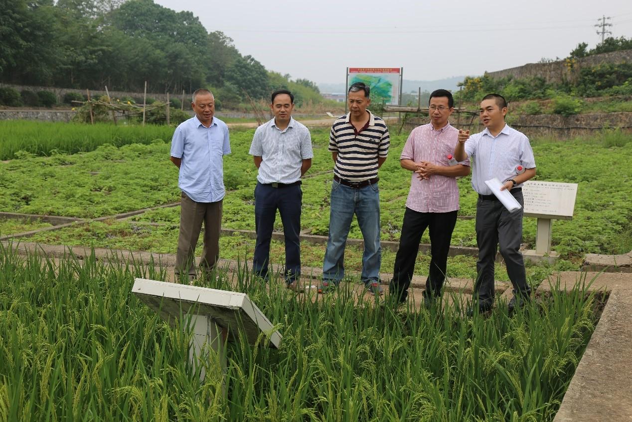 中国农业科学院作物科学研究所张卫建研究员赴祁阳站调研