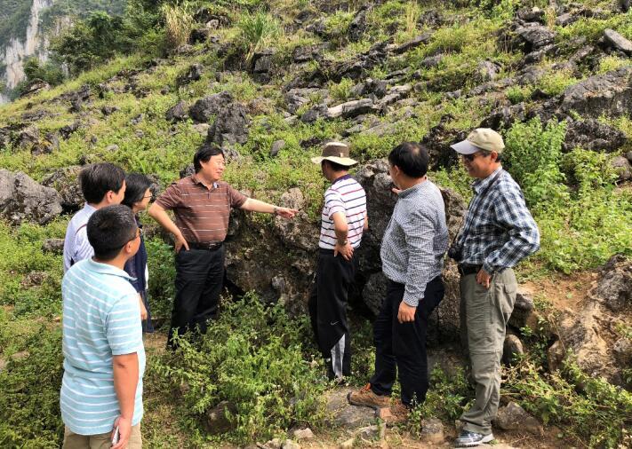 中国生态学会专家组开展喀斯特石漠化治理咨询考察