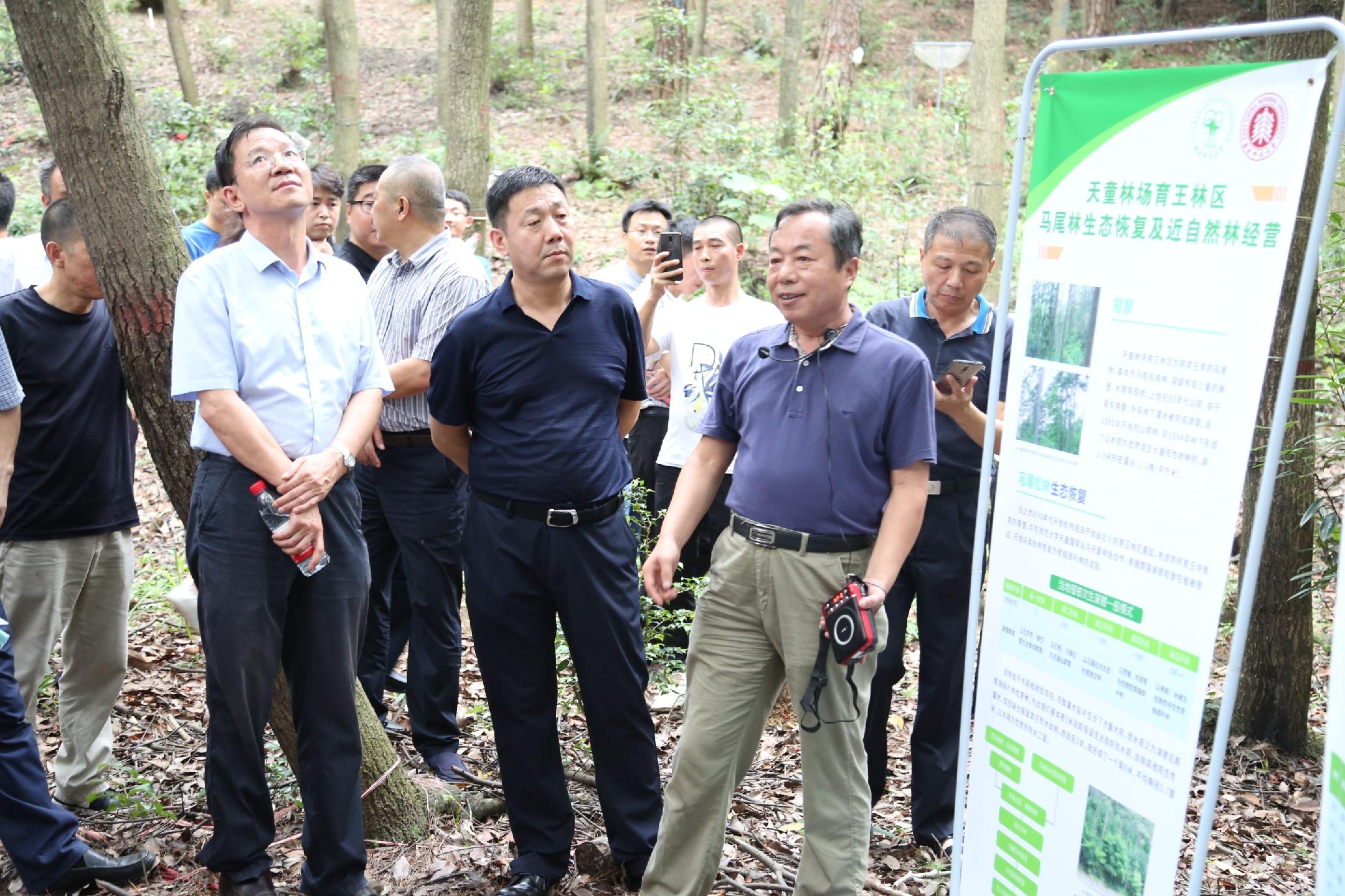 沪苏浙三省市地市林业局长和义务森林资源监督员到天童站育王样地参观学习