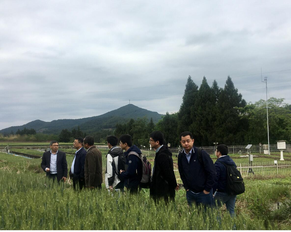 中国农业大学张福锁院士一行访问盐亭站